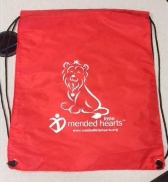 lion cinch sack
